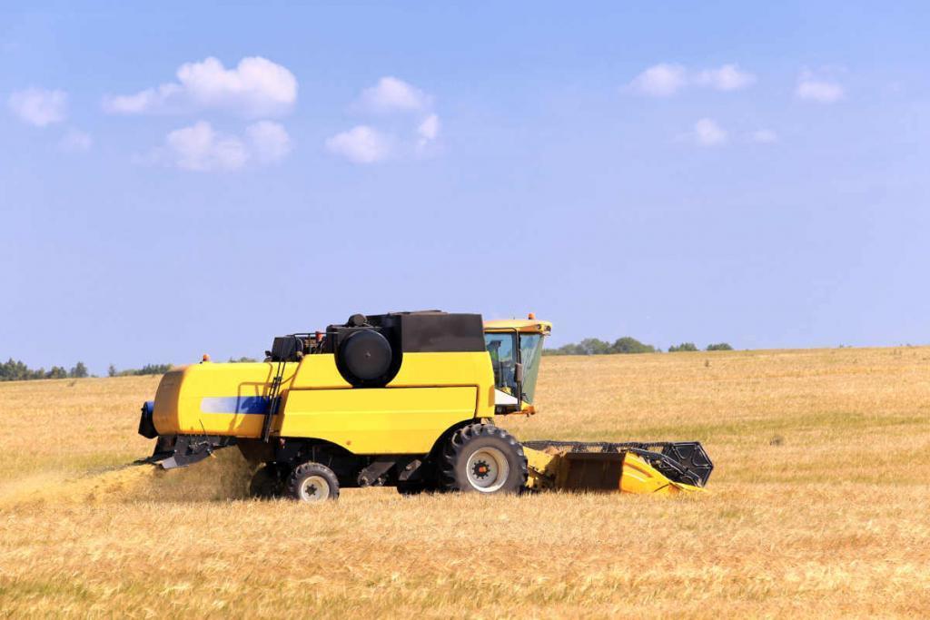 Fachübersetzung Agrarwirtschaft - Einfach Russisch Business